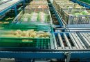 KNAPP realiza una solución logística en Migros Lucerna