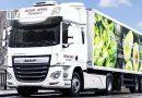 DAF Trucks ha comenzado las pruebas del camión CF Hybrid